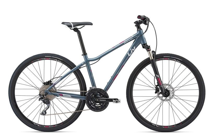 Giant Rove 1 Disc DD (2018)